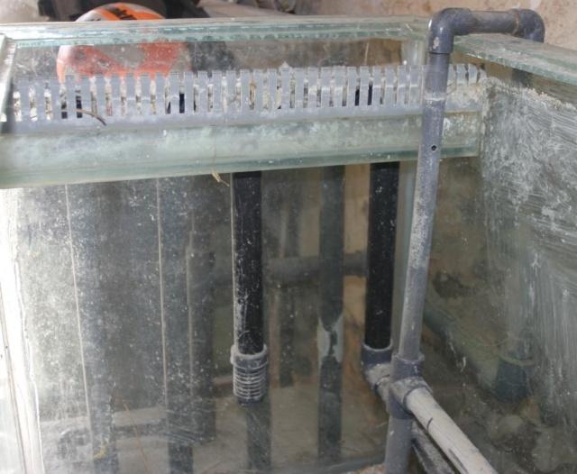 Comment monter un bac récifal? Aqua310