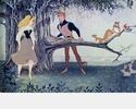 La Belle au Bois Dormant [Walt Disney - 1959] - Page 5 1959_120