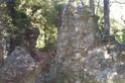 Recherche à saint Remy de Provence Dcp_3011