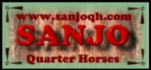 Banner Advertising On our Home Page.... Sanjoa14