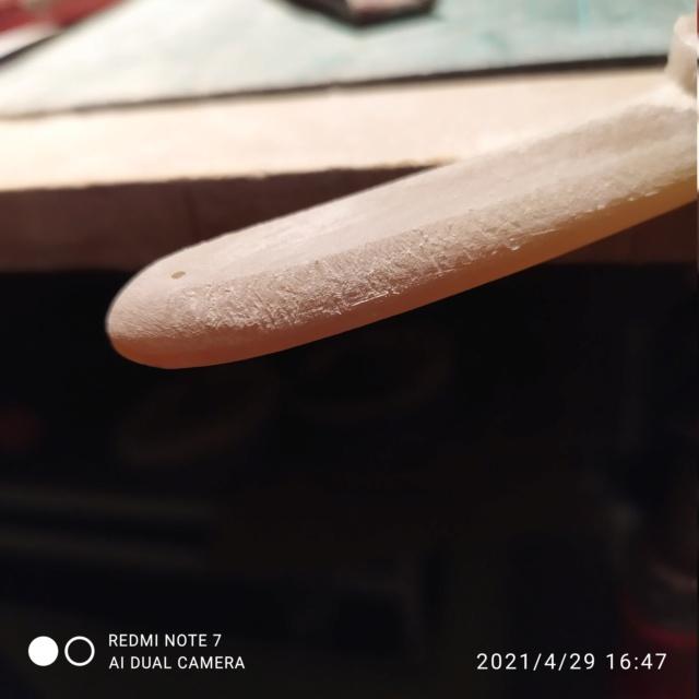 Châsse en corne blonde bombée - FINI Img_2073