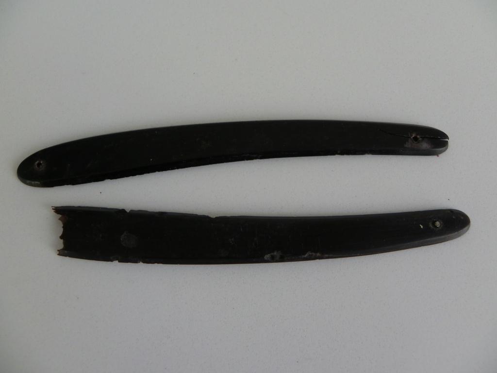 Les châsses de pascal Imgp0024