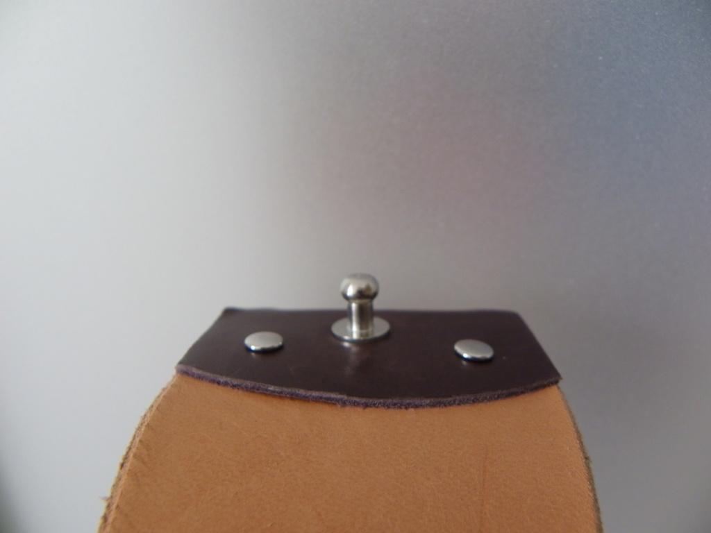 prototype de cuir de voyage Imgp6062