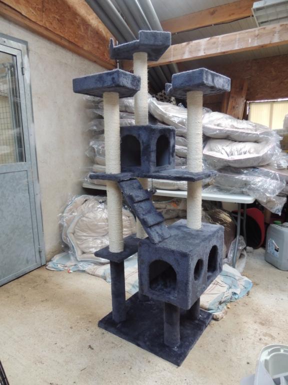 Cadeaux d'arbres à chats Dscn0111