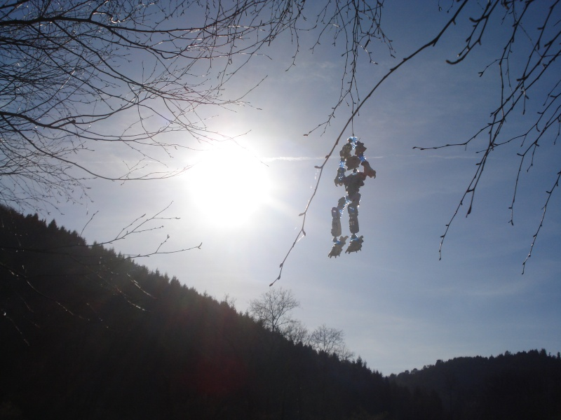 Photos/fonds d'écran bionicles Dsc03211