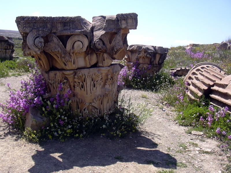 Timgad la  Rome Africaine Gfhgfg10