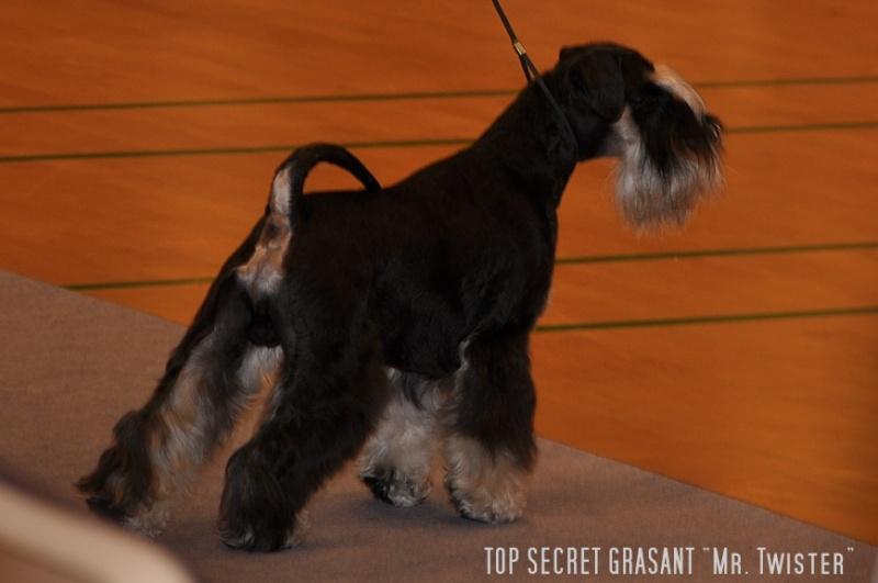 INTCH, DKCH, CZCH, KBHV 09, 10, DKKV 09,10, Gold Dog '09, '10, '11 - TOP SECRET GRASANT - Page 3 Dsc_0911