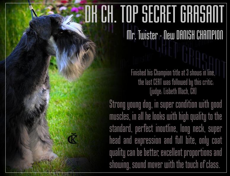 INTCH, DKCH, CZCH, KBHV 09, 10, DKKV 09,10, Gold Dog '09, '10, '11 - TOP SECRET GRASANT - Page 3 Twisti10