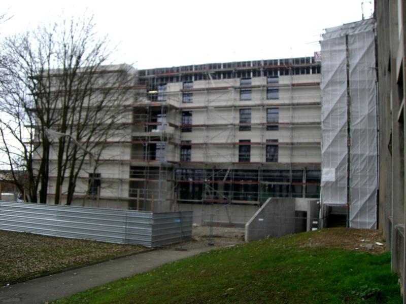 [LEGTA Obernai] Avancée du chantier Cimg9332