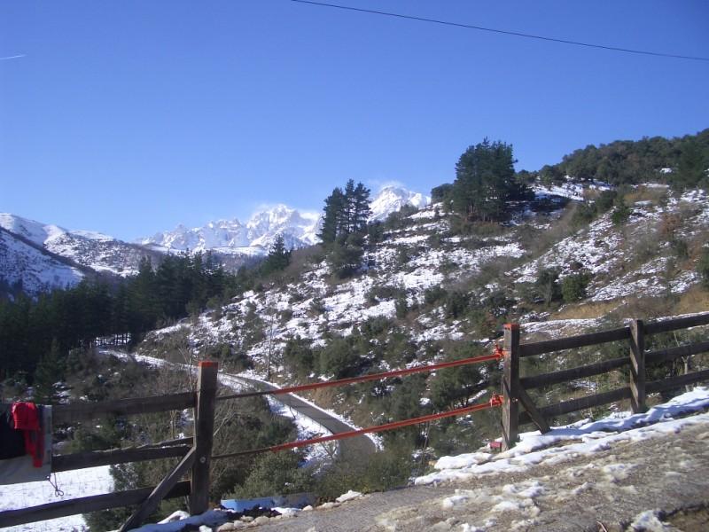 Limpieza y aseo en Aravalle (16-12-08) Imgp1326