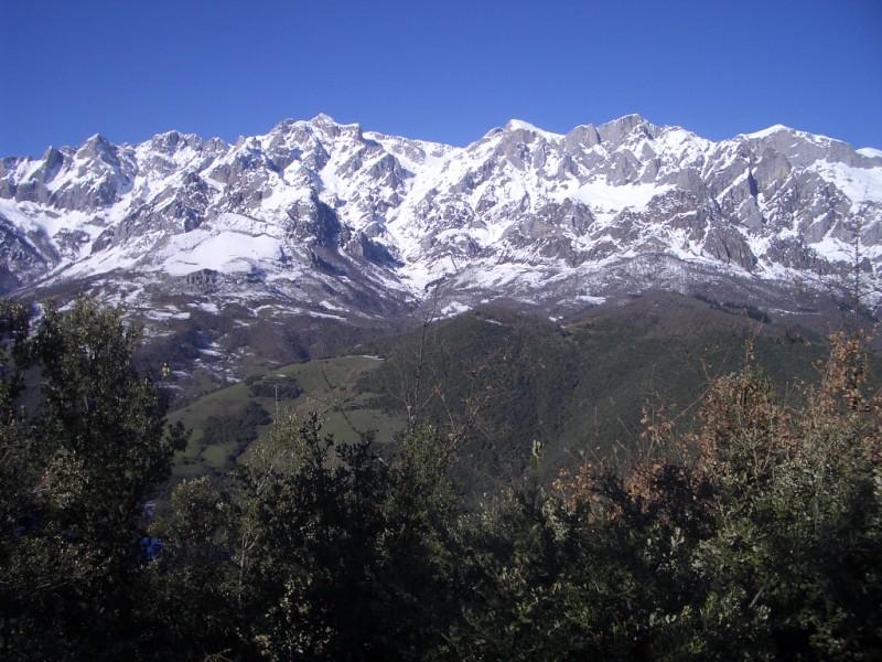 Visita a Aravalle en Navidades (Diciembre 2008) Imgp1353