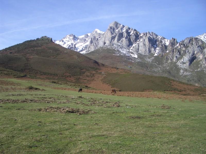 Visita a Aravalle en Navidades (Diciembre 2008) Imgp1354