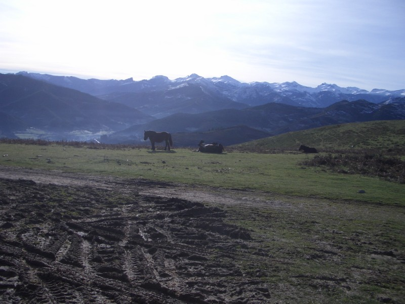 Visita a Aravalle en Navidades (Diciembre 2008) Imgp1355