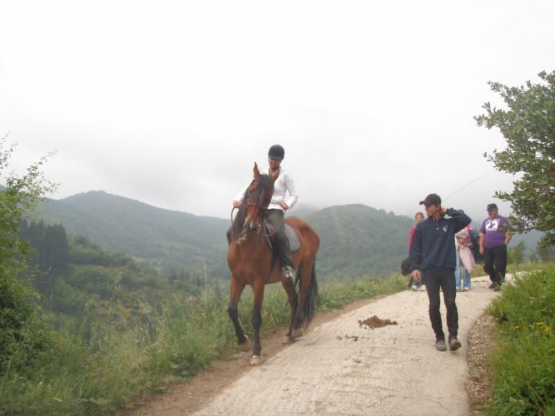 Final de curso con los Caballos de Aravalle (4/6/09) P6040545