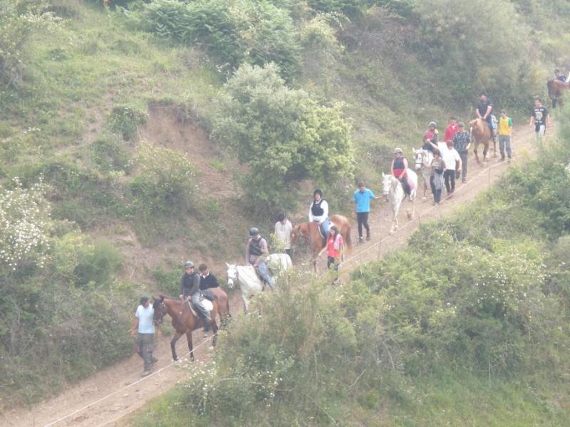 Final de curso con los Caballos de Aravalle (4/6/09) P6040613