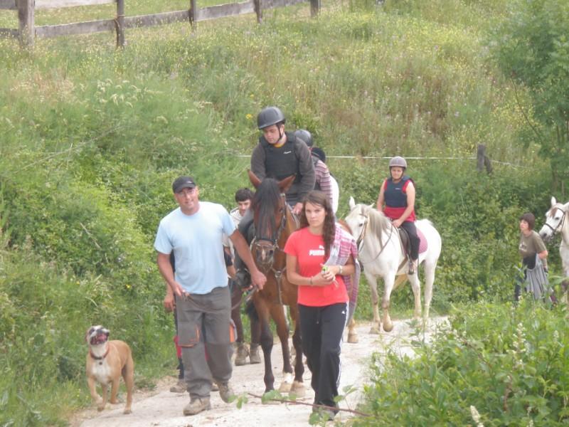 Final de curso con los Caballos de Aravalle (4/6/09) P6040614