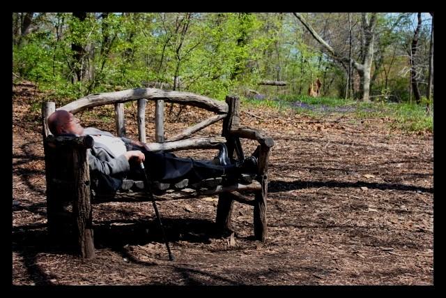 Petite sieste à Central Park Viv10