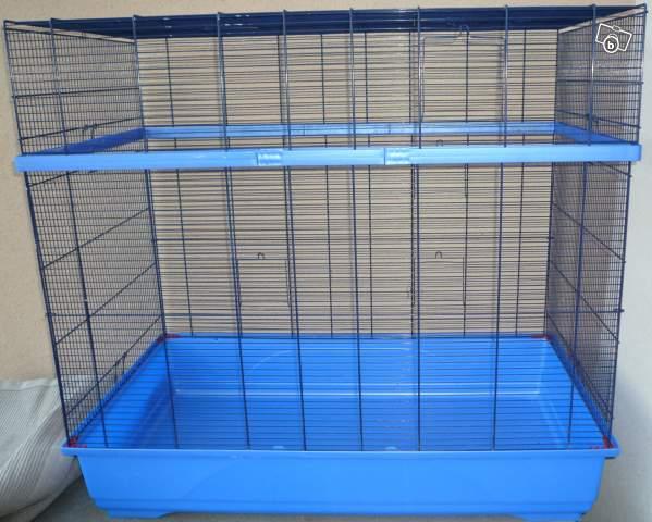 Aménagement cage 26286710