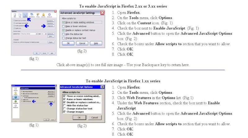 Enable JavaScript in Firefox Java10