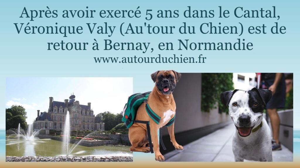 Autour du Chien - Page 2 Aprzos11