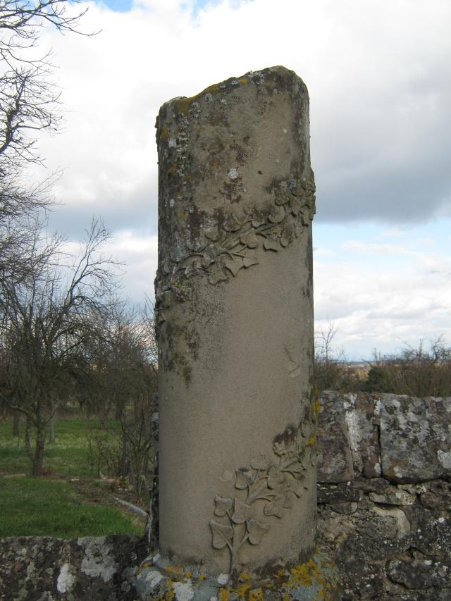 De l'autre côté du mur...du cimetière de Wangen Img_0333