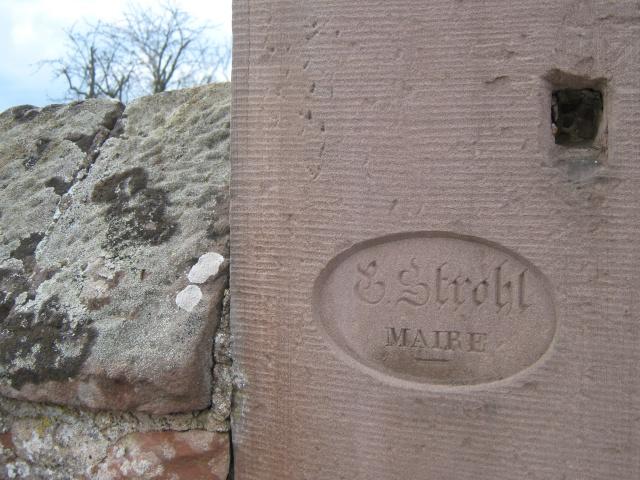 De l'autre côté du mur...du cimetière de Wangen Img_0337