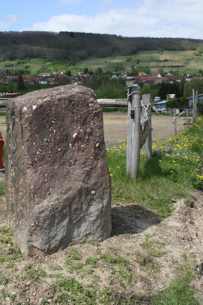Wangen ou le langage des pierres Img_0810