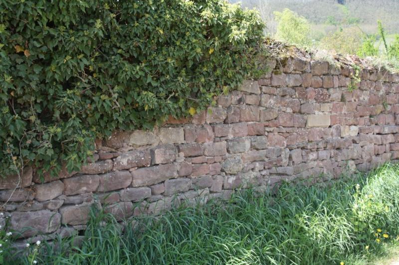 Wangen ou le langage des pierres Img_0920