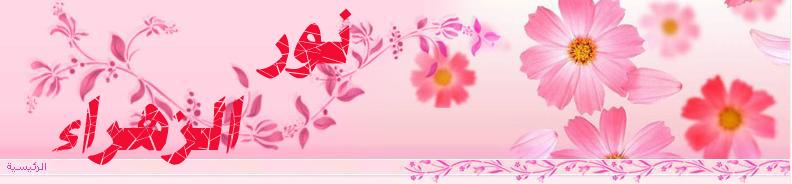 نور الزهراء