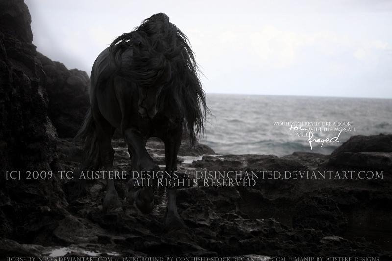 The Dark king Bc908310