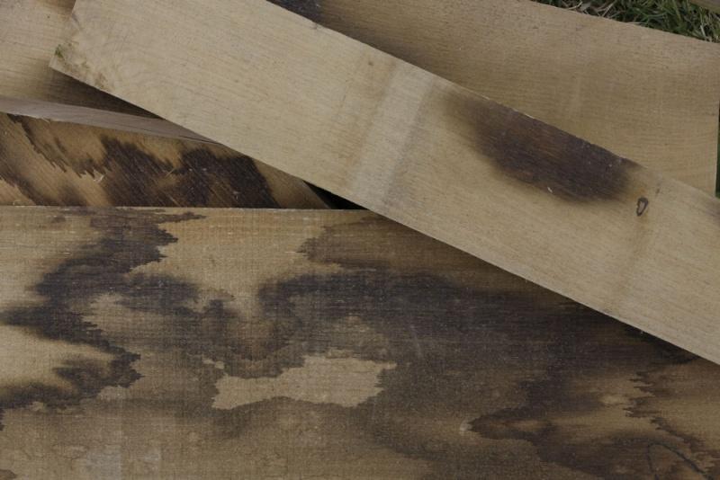 Essences de bois: Chêne et châtaignier. 03_aou33