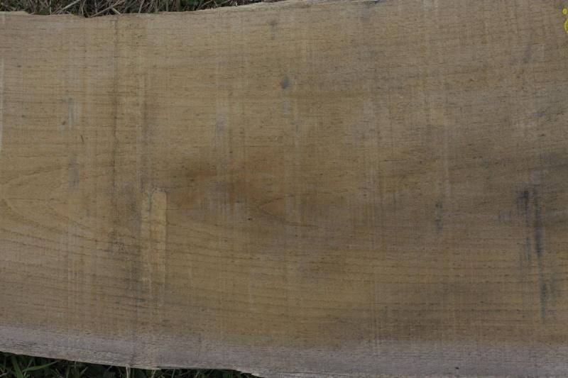Essences de bois: Chêne et châtaignier. 03_aou34