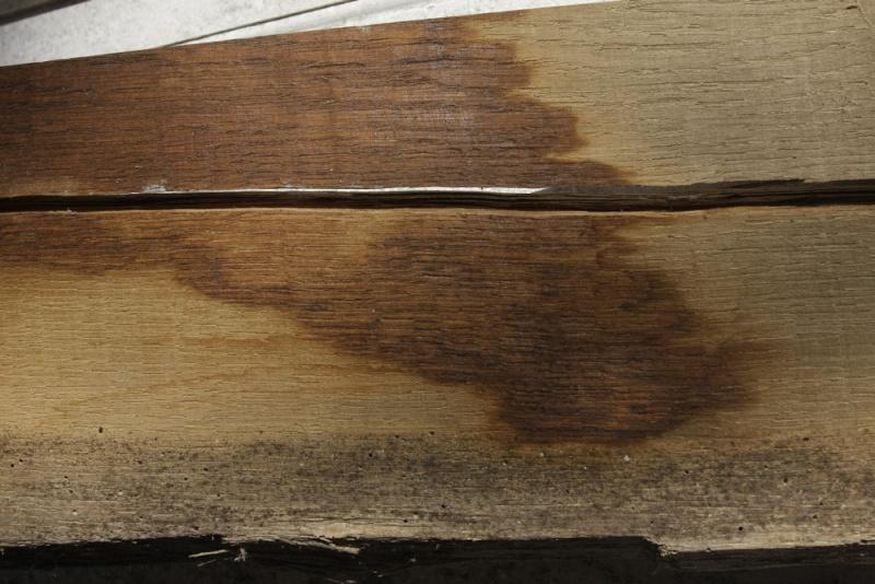 Essences de bois: Chêne et châtaignier. 04_aou10