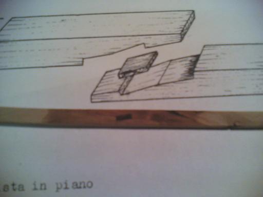 Terzo Gozzo terzo diario!!! (Modifica) Palell14