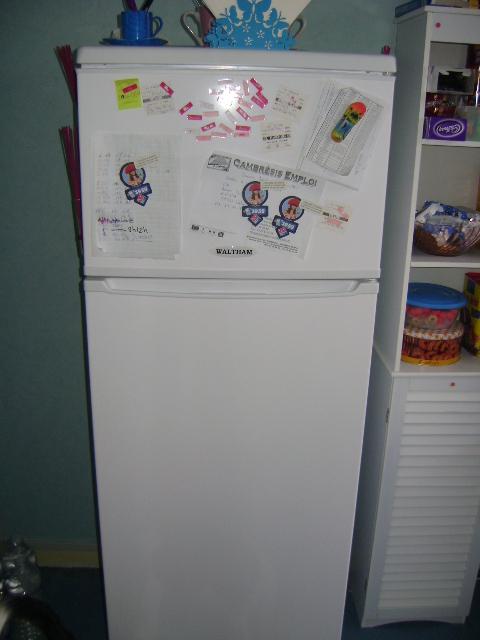 Retrouver la propriétaire du frigo . Dsc01110