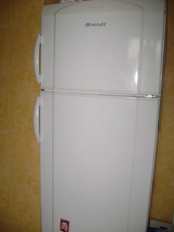 Retrouver la propriétaire du frigo . Dsc03310
