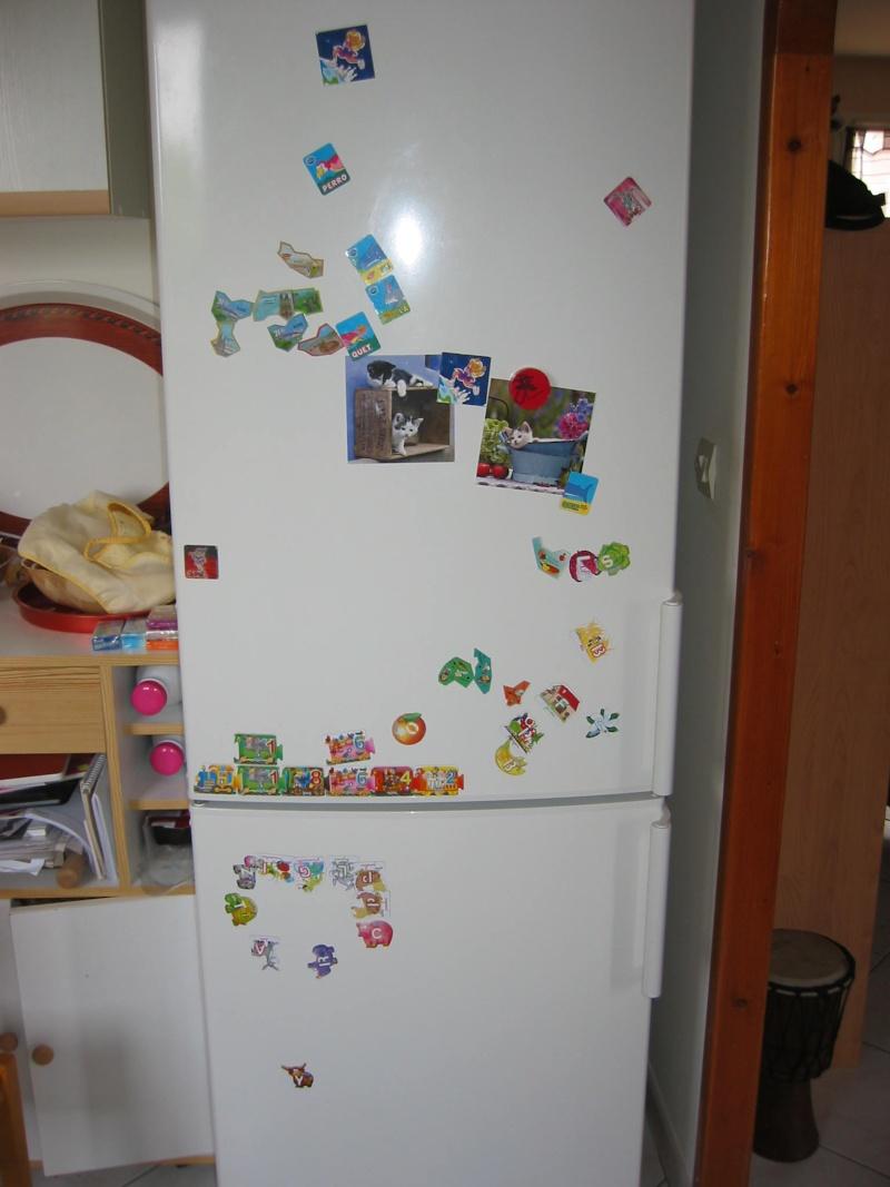 Retrouver la propriétaire du frigo . Img_1510