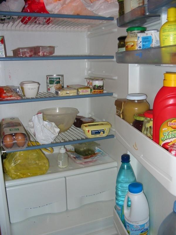 Retrouver la propriétaire du frigo . Scully10