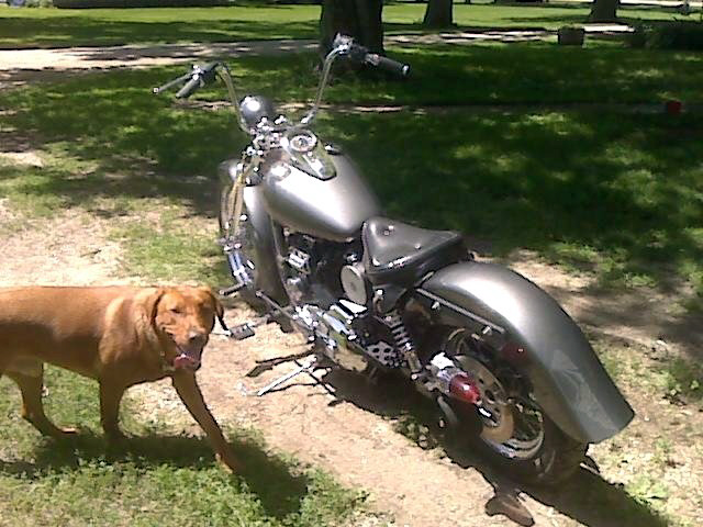 Rebuild of my 03' Harley,..ready for paint:) Cid_im49