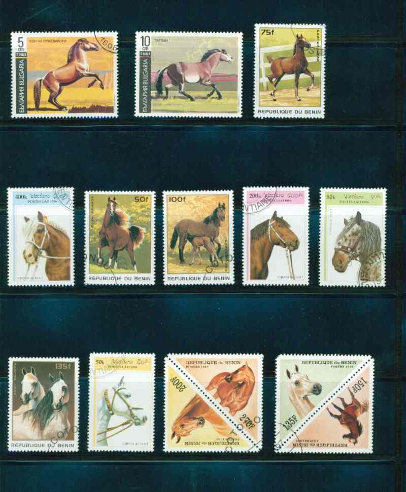 Pferde - Seite 3 P10