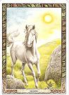 Ways of finding out what your Totem/Power Animal is - Pat R Horse10