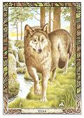 Ways of finding out what your Totem/Power Animal is - Pat R Wolf10