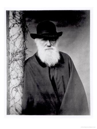 La théorie de Darwin 13741710