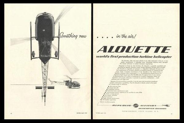 Nos préférences en photo Alouet11