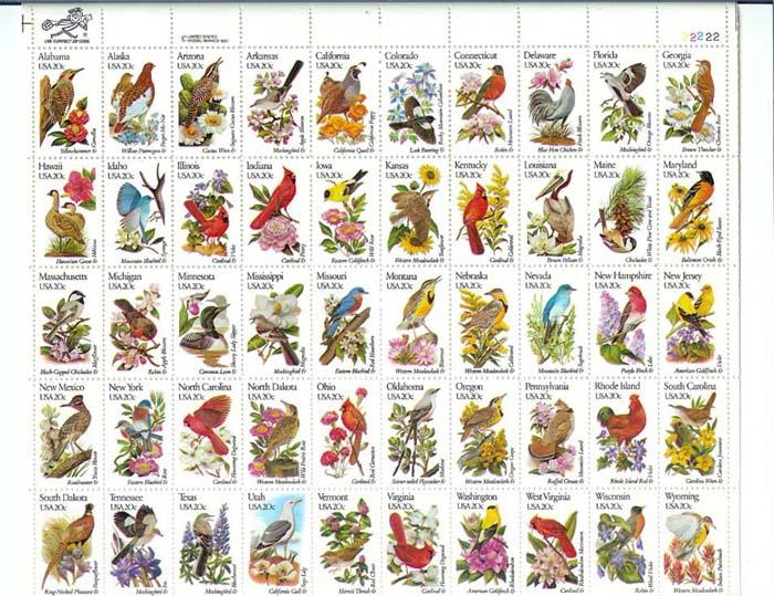 Vögel - Seite 2 Grossb10