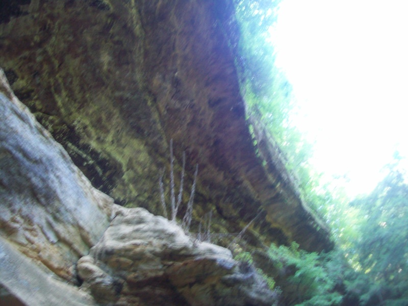 """some pics from """"old mans cave"""" Ole_ma17"""
