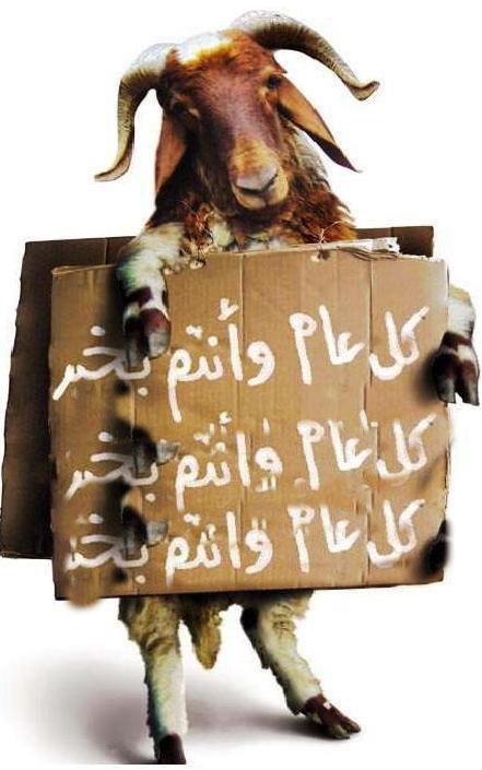 عيد اضحى مبارك لكل اعضاء وزوار منتدى مملكة الابداع ... Mouton10