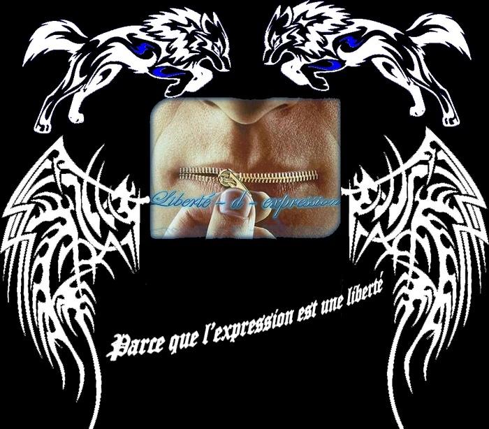 Liberté - d - expression - Portail Libdex10