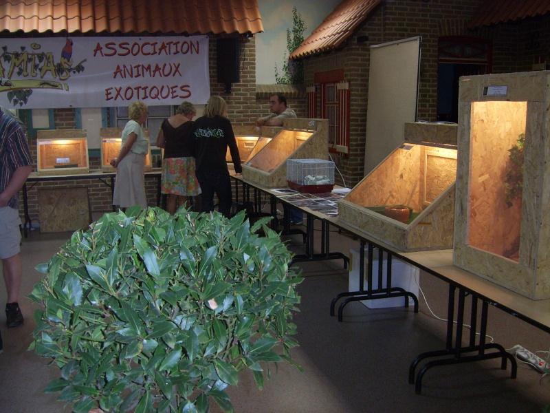 2008 - 09 - les 27 et 28 - Exposition à Bailleul (59) Sv100810