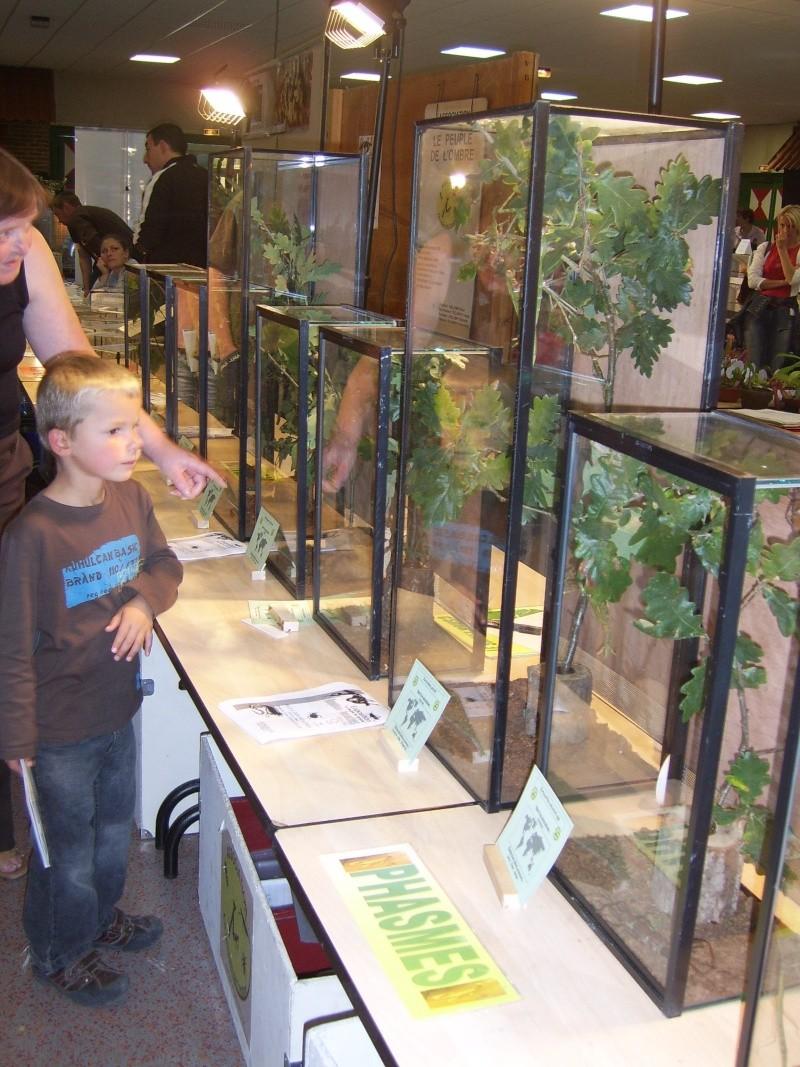 2008 - 09 - les 27 et 28 - Exposition à Bailleul (59) Sv100811